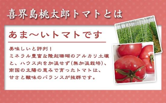喜界島トマトとは