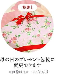 母の日のプレゼント包装に変更できます