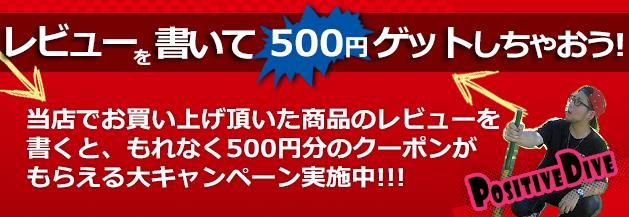 只今、当店でお買い上げ頂いた商品のレビューを書くともれなく500円分のクーポンをプレゼント中!
