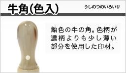 牛角(色入)