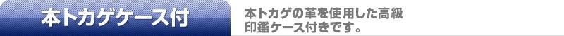 象牙(中)本トカゲケース