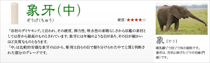 象牙(中)【開運吉相印】