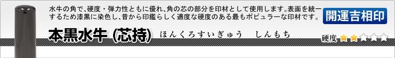 法人用-実印(代表者登録印) 本黒水牛(芯持)【開運吉相印】