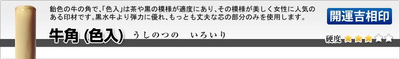 法人用-実印(代表者登録印) 牛角(色入)【開運吉相印】