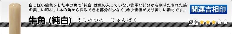 法人用-実印(代表者登録印) 牛角(純白)【開運吉相印】