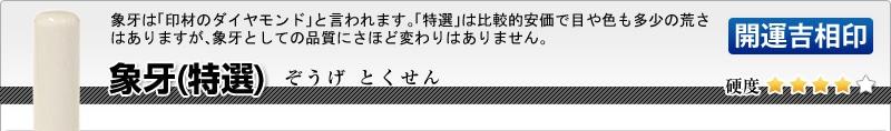 法人用-実印(代表者登録印) 象牙(特選)【開運吉相印】