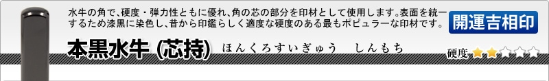 法人用-角印【開運吉相印】 本黒水牛(芯持)