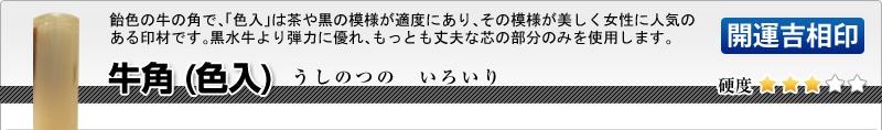 会社印2本セット(実印+角印)【開運吉相印】牛角(色入)