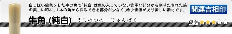 会社印2本セット(実印+角印)【開運吉相印】牛角(純白)