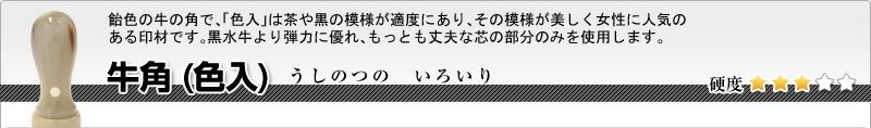 会社印2本セット(実印+銀行印)牛角(色入)