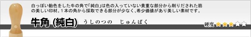 会社印2本セット(実印+銀行印)牛角(純白)