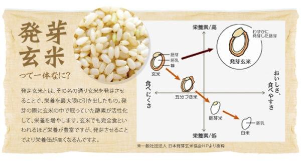スリムトビラ発芽玄米パスタの説明