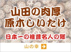 原木シイタケ