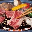 鳥取県産 鳥取和牛DAISEN焼肉 500g