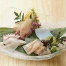 富山県産 昆布でしめたお刺身「漁音」五種