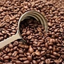 コーヒー 紅茶ギフト