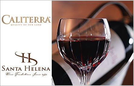 チリ産 ワインギフト