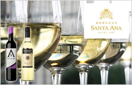 アルゼンチン産 ワインギフト