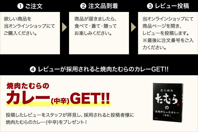 お買上商品のレビュー投稿で100ポイントGET!!