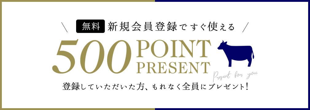 新規会員様に500ポイントプレゼント!