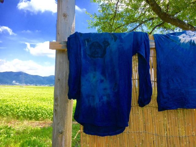 地元の婦人たちが藍染、福島