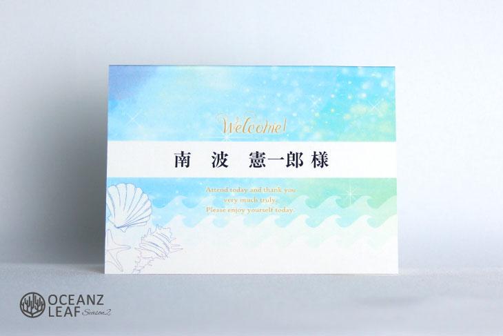 結婚式席札 リゾートペーパーアイテム【タッデオ】ライトブルー Oceanz leafシリーズ画像1