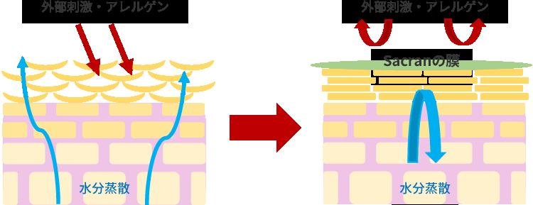 バリア機能のイメージ画像