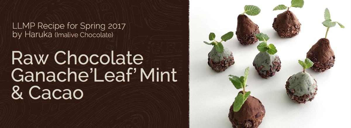 春のレシピ2017プレゼント