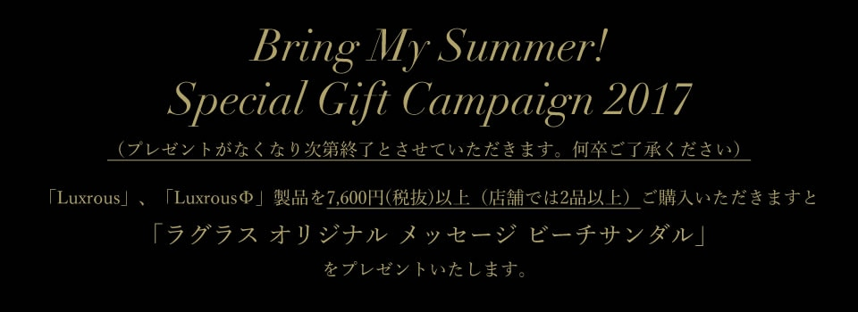 Special Gift Campaign 2017
