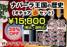ナバーラ王国の歴史《オチョア赤6本セット》【送料無料】¥15,800