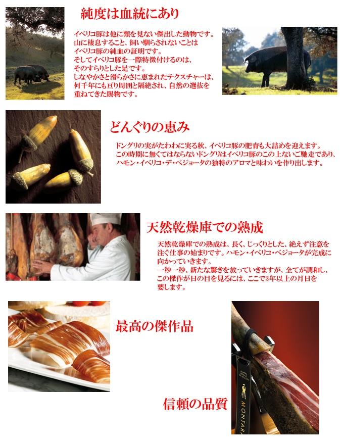 イベリコ豚は他に類を見ない傑出した動物です。山に棲息すること、飼い馴らされないことはイベリコ豚の純血の証明です。そしてイベリコ豚を特徴づけるのはそのすらりとした足です。しなやかさと滑らかさに恵まれたテクスチャーは何千年にも渡り周囲と隔絶され、自然の選抜を重ねてきた賜物です。