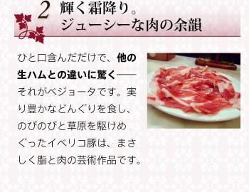 2輝く霜降り。ジューシーな肉の余韻 ひと口含んだだけで、他の生ハムとの違いに驚く——それがベジョータです。実り豊かなどんぐりを食し、のびのびと草原を駆けめぐったイベリコ豚は、まさしく脂と肉の芸術作品です。