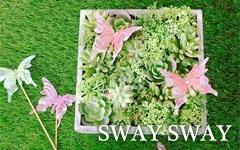 sway sway