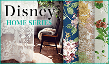 Disney HOME SERIES