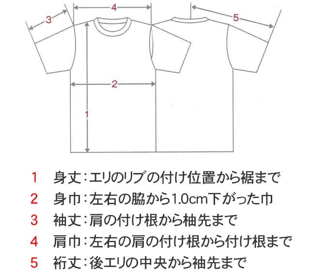 ドライTシャツのサイズ