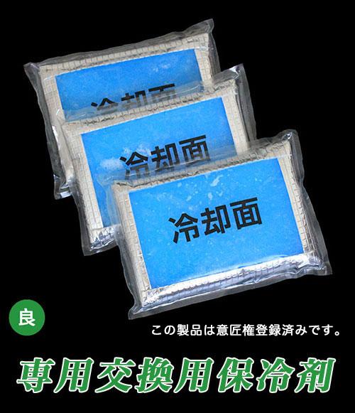 ホレイベストV2用交換用保冷剤画像