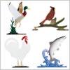 鳥・魚シリーズ:カラー