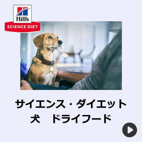 サイエンスダイエット犬ドライフード