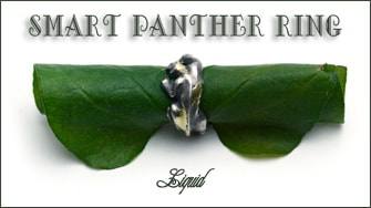 Smart Panther Ring & Necklace