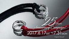 25th_anniversary campaign
