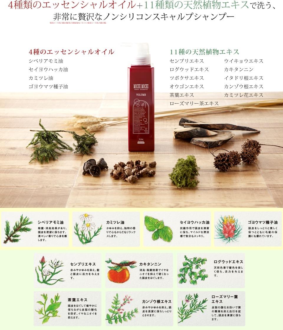 4種類のエッセンシャルオイル+11種類の天然植物エキスで洗う、非常に贅沢なノンシリコンスキャルプシャンプー 4種のエッセンシャルオイル…シベリアモミ油、セイヨウハッカ油、カミツレ油、ゴヨウマツ種子油 11種の天然植物エキス…センブリエキス、ウイキョウエキス、ログウッドエキス、カキタンニン、ツボクサエキス、イタドリ根エキス、オウゴンエキス、カンゾウ根エキス、茶葉エキス、カミツレ花エキス、ローズマリー茶エキス