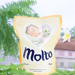 モルトの写真