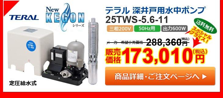 テラル 深井戸用水中ポンプ 25TWS-5.6-11
