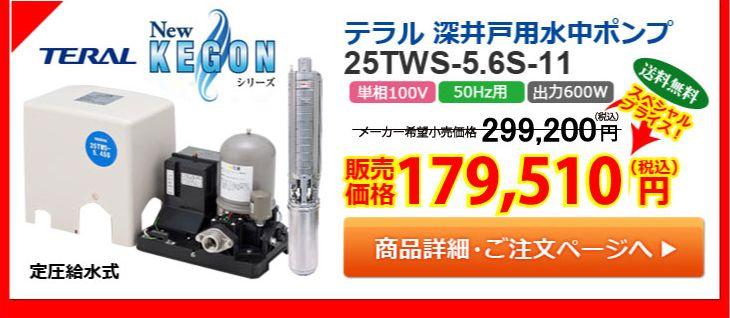 テラル 深井戸用水中ポンプ 25TWS-5.6S-11