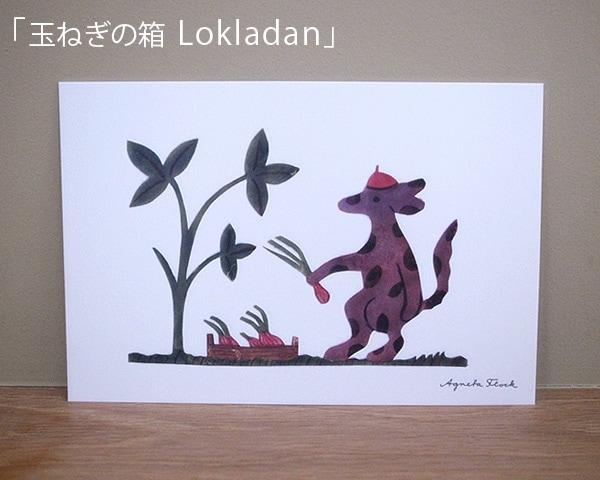 ポストカード「玉ねぎの箱 Lokladan」