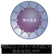 電解水によりウイルス蛋白を酸化分解します。