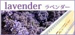ラベンダーシリーズ