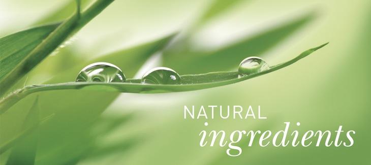 ナチュラル化粧水の成分
