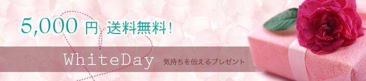 5,000円のプレゼント