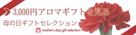 3000円の母の日プレゼント